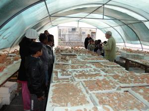 Activités archéologiques proposées par la JPGF en Ile de France